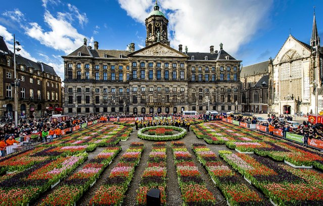 A general view of the Dam Square, where locals can pick the flowers for free in a specially created garden during the official opening of the tulip season, in Amsterdam, The Netherlands, January 17, 2015. (Photo by Koen van Weel/EPA)
