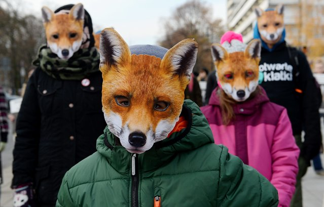 Activists dressed as foxes participate in the demonstration for the day without fur on November 15, 2016 in front of Sejm in Warsaw, Poland. During the demonstration, signatures were collected under the petition to create awareness for animals being killed for fur. (Photo by Darek Majewski/Gallo Images Poland/Getty Images)