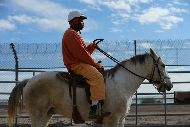 An inmate rides a wild horse as part of the Wild Horse Inmate Program (WHIP) at Florence State Prison in Florence, Arizona, U.S., December 2, 2016. (Photo by Mike Blake/Reuters)