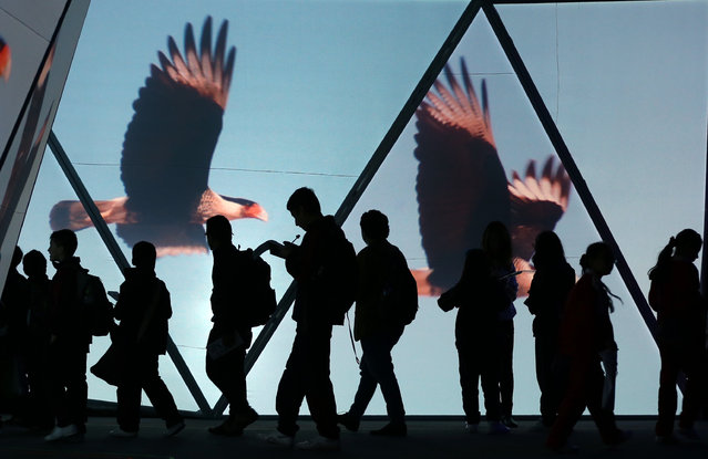 People walk past a screen showing videos of flying birds at the Macondo stand during the International Book Fair in Bogota, Colombia, Tuesday, April 28, 2015. (Photo by Fernando Vergara/AP Photo)