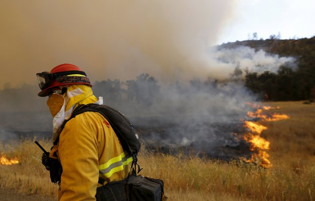 A firefighter looks over a controlled burn at the so-called Jerusalem Fire in Lake County, California, August 12, 2015. (Photo by Robert Galbraith/Reuters)