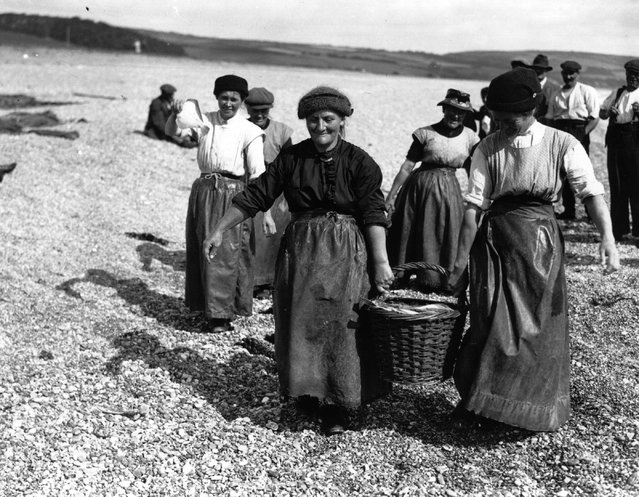 Women in Devon carry loaded baskets of fish along the shore, watched by the men, 1927. (Photo by Central Press)