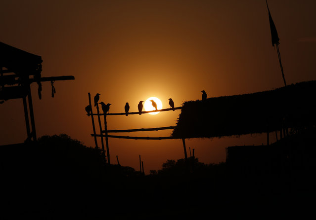 Crows sitting on a pole are silhouetted against setting sun during lockdown to control the spread of the coronavirus in Prayagraj, India, Tuesday, April 21, 2020. As governments around the world try to slow the spread of the coronavirus, India has launched one of the most draconian social experiments in history, locking down its entire population, including an estimated 176 million people who struggle to survive on $1.90 a day or less. (Photo by Rajesh Kumar Singh/AP Photo)