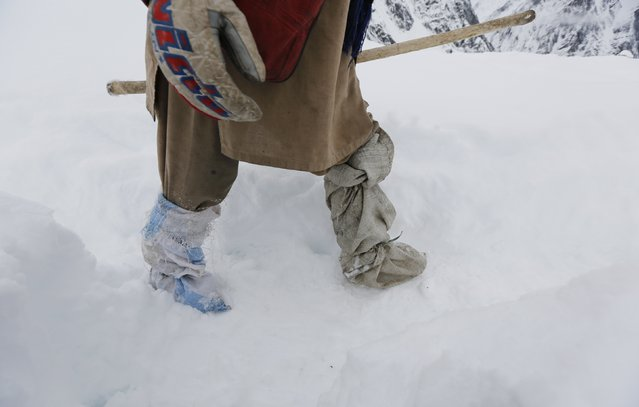 A porter leaves the snow-covered Concordia, the confluence of the Baltoro and Godwin-Austen glaciers, wearing self-made gaiters near K2 in the Karakoram mountain range in Pakistan September 6, 2014. (Photo by Wolfgang Rattay/Reuters)
