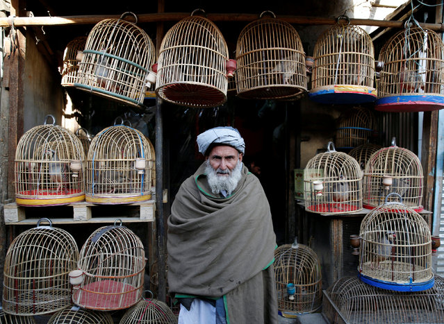 An Afghan man looks on as he stands at a bird market in Kabul, Afghanistan December 4, 2017. (Photo by Mohammad Ismail/Reuters)