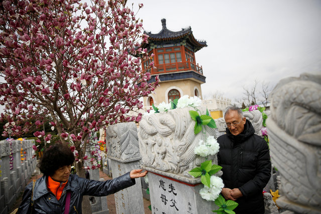 People tend to a grave at Babaoshan Cemetery ahead of Qingming Festival, or Tomb Sweeping Day, in Beijing, China, April 4, 2018. (Photo by Thomas Peter/Reuters)