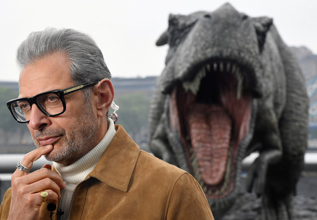 """Cast member Jeff Goldblum conducts an interview near a model dinosaur during a photocall to promote the forthcoming film """"Jurassic World: Fallen Kingdom"""" in London, Britain, May 24, 2018. (Photo by Toby Melville/Reuters)"""