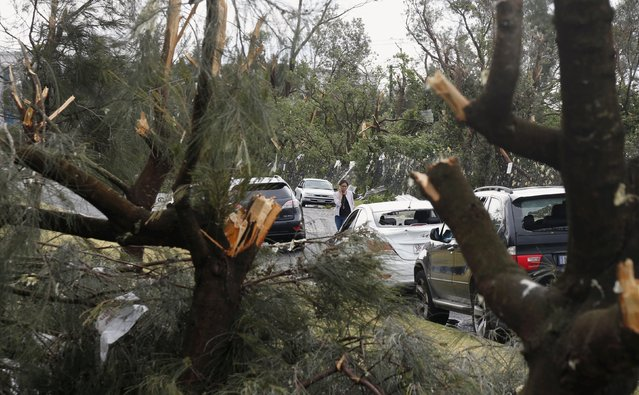 A motorist assesses the damage to her car after a tornado hit the Sydney suburb of Kurnell, December 16, 2015. (Photo by Jason Reed/Reuters)