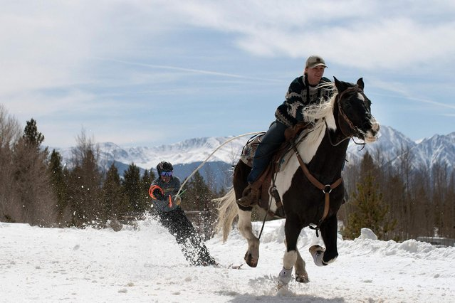 Rider Ali Briggs and skier Jerry Kissell navigate the race course during the 73rd annual Leadville Ski Joring weekend competition on March 7, 2021 in Leadville, Colorado. Skijoring, which has its origins as a competitive sport in Scandinavia, has been adapted over the years to include a team made up of a rider and skier who must navigate jumps, slalom gates, and the spearing of rings for points. In the spirit of the Wild West, and despite the coronavirus pandemic, Leadville continued the annual tradition by relocating the race course from the city center, and not allowing spectators. (Photo by Jason Connolly/AFP Photo)