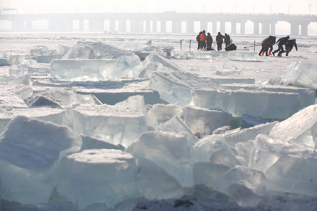 Workers pull a giant ice cube out of the frozen Songhua River as they extract ice to make sculptures for the upcoming Harbin International Ice and Snow Sculpture Festival, in Harbin, Heilongjiang province, China, December 17, 2016. (Photo by Aly Song/Reuters)