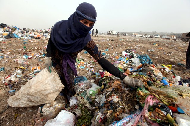 A garbage collector looks for recyclable waste at a dump in Erbil, in Iraq's northern autonomous Kurdistan region, February 21, 2016. (Photo by Azad Lashkari/Reuters)