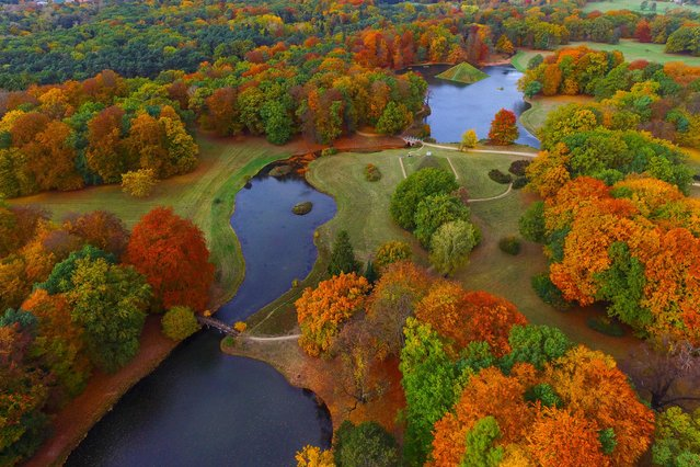 An aerial view taken with a drone shows the autumnally colored Fuerst-Pueckler-Park near Cottbus, eastern Germany, Saturday, October 29, 2016. The park, composed with great sensitivity in the 19th century by Prince Hermann von Pueckler-Muskau, is considered as one of the last great German landscape gardens. (Photo by Patrick Pleul/DPA via AP Photo)