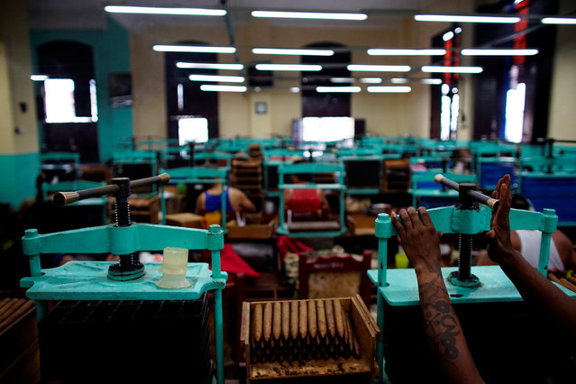 Cigars are seen at the H. Upmann tobacco factory in Havana, Cuba on March 2, 2017. (Photo by Alexandre Meneghini/Reuters)