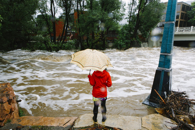 A woman looks at Boulder Creek, which flooded early today after three days of heavy rainfall September 12, 2013 in Boulder, Colorado. An estimated 6-10 inches of rain fell in 12-18 hours and more is expected throughout the day. (Photo by Dana Romanoff/Getty Images)