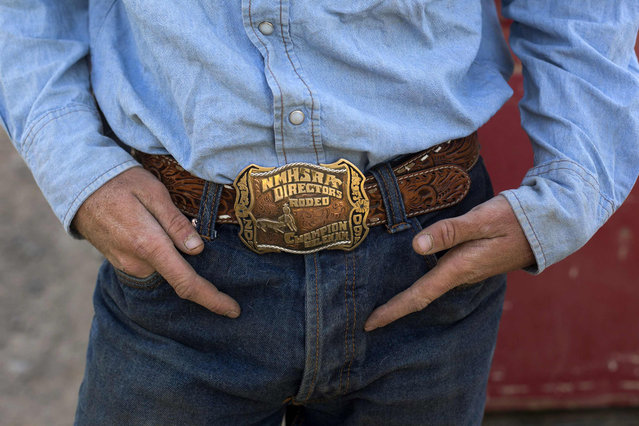 A rodeo champion buckle adorns the belt of cowboy Stetson Mackey as he waits to begin a day of gathering cattle near Ignacio, Colorado June 11, 2014. The land where the cattle graze is leased from the Forest Service by third-generation rancher Steve Pargin. Several times a year, he and a crew led by his head cowboy, David Thompson, spend a week or more herding cattle from mountain range to mountain range to prevent them from causing damage to fragile ecosystems by staying in a single area too long. (Photo by Lucas Jackson/Reuters)