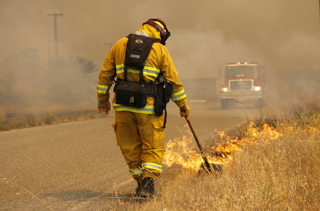 A firefighter sets a back fire at the so-called Jerusalem Fire in Lake County, California, August 12, 2015. (Photo by Robert Galbraith/Reuters)