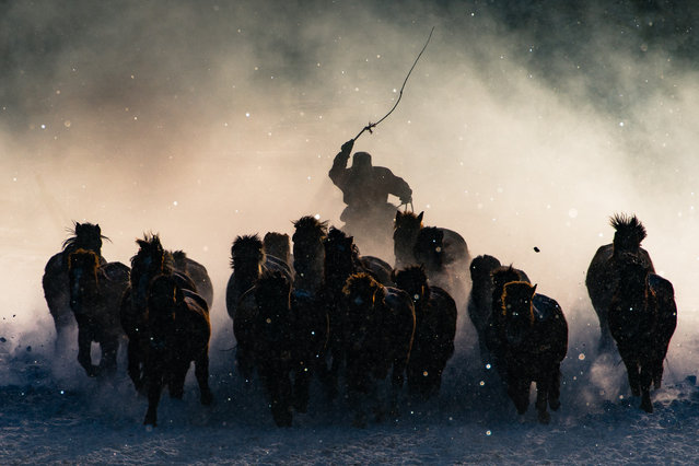 The annual National Geographic travel photographer of the year contest attracted 10,000 entries worldwide this year. The grand prize went to Anthony Lau for his shot of a horseman in Inner Mongolia, winning him a trip to a polar bear photo safari at Churchill Wild-Seal Heritage Lodge. Here's a selection of the winning entries. Grand prize winner: Winter Horseman. The Winter in Inner Mongolia is very unforgiving. (Photo by  Anthony Lau/National Geographic Travel Photographer of the Year Contest)