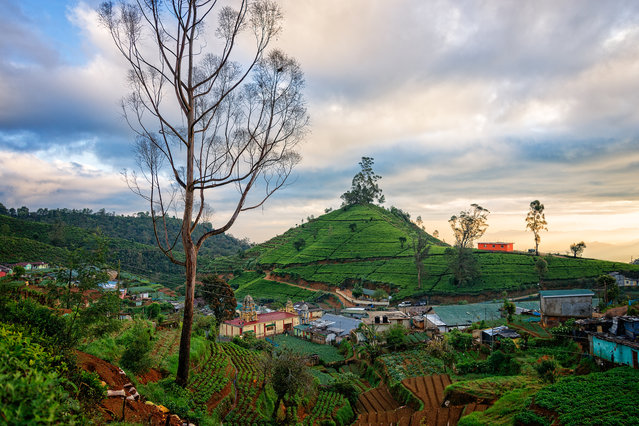 #4. Sri Lanka, Total GDP: USD 81.32 billion (2016). Contribution of Travel and Tourism to GDP: 11.4%. Here: Early morning view of a village in Nuwara Eliya, Sir Lanka. (Photo by Emad Aljumah/Getty Images)