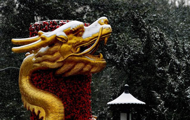 Falling snow covers a dragon sculpture on a column of roses at the Temple of Heaven in Beijing following the year's first snowfall on February 10, 2011. (Photo by Frederic J. Brown/AFP)