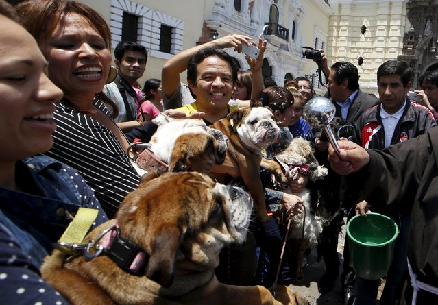 Owners hold their pets as a Catholic priest blesses them outside the San Francisco church in Lima, October 4, 2015. Hundreds of pets get blessed during Saint Francis of Assisi festivities outside the San Francisco church in downtown Lima. (Photo by Mariana Bazo/Reuters)