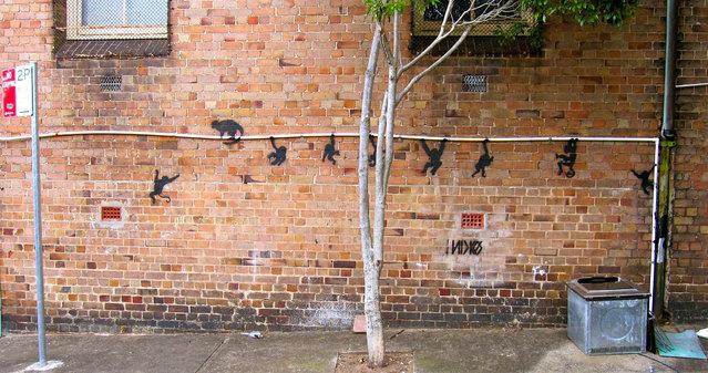 GRAFFITI SURRY HILLS. Sydney, Australia, 2012. (Photo by baddogwhiskas)