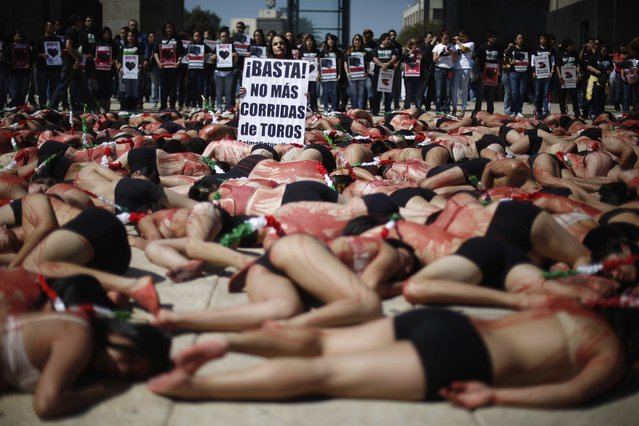 """An activist from the animal rights group AnimaNaturalis holds a placard that reads """"Stop! No More Bullfighting!""""  as fellow activists lie covered in mock blood during a protest against bullfighting in Mexico City February 3, 2013. (Photo by Tomas Bravo/Reuters)"""
