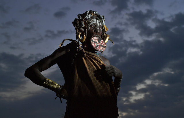 A woman from the Mursi tribe poses for a photo in the Mago National park near Jinka in Ethiopia's southern Omo Valley region on September 21, 2016. The Mursi are a Nilotic pastoralist ethnic group which number around 10,000 people in Ethiopia. Some Mursi women choose to wear a saucer lip plate (dhebi a tugoin). A girls lower lip is cut when she reaches the age of 15 or 16. The wound is then stretched over time to accomodate a large clay plate. The Mursi tribe are one of the few tribes left who continue this practise. The construction of a sugar factory in Mago National Park has begun to change the way of life for many Mursi as they begin to leave their traditional way of life to work at the factory. Human rights groups also report that the Mursi fear eviction by the Ethiopian government from a large area of the park altogether. The construction of the Gibe III dam, the third largest hydroelectric plant in Africa, and large areas of very 'thirsty' cotton and sugar plantations and factories along the Omo river are impacting heavily on the lives of tribes living in the Omo Valley who depend on the river for their survival and way of life. Human rights groups fear for the future of the tribes if they are forced to scatter, give up traditional ways through loss of land or ability to keep cattle as globalisation and development increases. (Photo by Carl De Souza/AFP Photo)