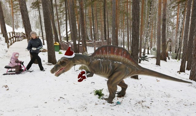 "People walk past a model of a dinosaur, with Santa Claus hat and gloves seen on it, at the ""Dinosaurs Park"" located in the Taiga area at the Royev Ruchey zoo in the suburbs of Russia's Siberian city of Krasnoyarsk, December 16, 2014. (Photo by Ilya Naymushin/Reuters)"