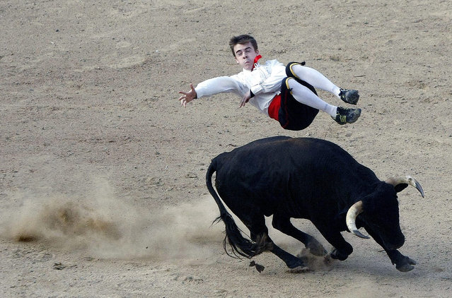 """A member of the """"Los Recortadores"""" from Spain makes a somersault during a performance with a bull at the Bullring of Canaveralejo in the city of Cali, Colombia, 21 December 2014. (Photo by Christian Escobar Mora/EPA)"""