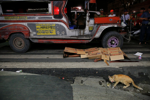 "A cat walks in front of the body of a man killed by unknown gunmen in Manila, Philippines early October 18, 2016. A sign on a cardboard found near the body reads, ""Pusher Ako, Wag Tularan"", which translates to ""I am a (drug) pusher, don't be like me"". (Photo by Damir Sagolj/Reuters)"