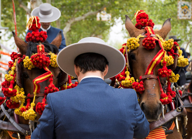 Attendants ride their horses and carriages during the first day of the April Fair celebrations in Sevilla, southern Spain, 15 April 2018. (Photo by Raúl Caro Cadenas/EPA/EFE)