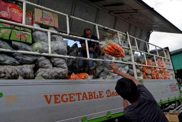 Workers load carrots onto the back of a truck at a vegetable market a day after Typhoon Haima hit La Trinidad, Benguet province, Philippines October 21, 2016. (Photo by Ezra Acayan/Reuters)