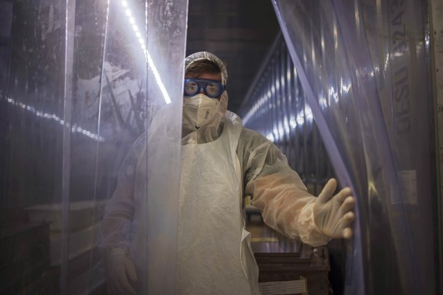 A morgue attendant at the Johannesburg branch of the South African funeral and burial services company Avbob keeps the curtain open from inside a refrigerated container where bodies of patients deceased with COVID-19 related illnesses are kept isolated ahead of their burials on January 22, 2021. (Photo by Marco Longari/AFP Photo)