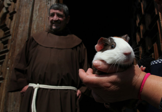 A pet owner holds his guinea pig named Riec as Father Francisco bestows a blessing on the pet rodent during a feast day Mass in honor of Saint Anthony, the patron saint of animals, at the Saint Fernando church, in Mexico City, Saturday, January 17, 2015. (Photo by Marco Ugarte/AP Photo)