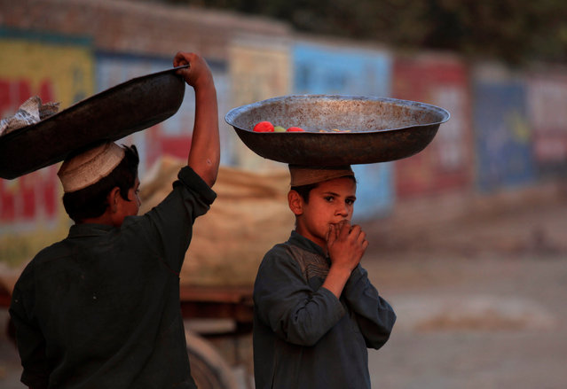 Boys wait to collect vegetables from a pile of rotten vegetables near a dustbin in Peshawar, Pakistan November 10, 2016. (Photo by Fayaz Aziz/Reuters)