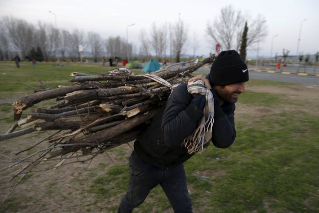 A migrant carries dry branches to set up a fire, near the town of Polikastro, Greece February 23, 2016. (Photo by Marko Djurica/Reuters)