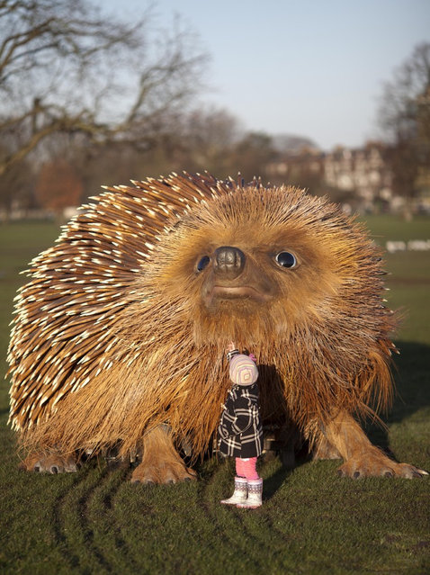 Giant Hedgehog In London