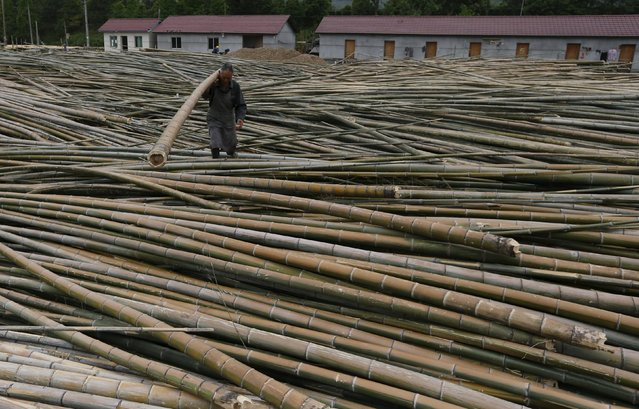 A man works at a bamboo processing factory in Longyou, Zhejiang province, China, May 5, 2015.  China's factories suffered their fastest drop in activity in a year in April as new orders shrank, a private business survey showed on Monday, hardening the case for fresh stimulus measures to halt a slowdown in the world's second-largest economy. (Photo by William Hong/Reuters)