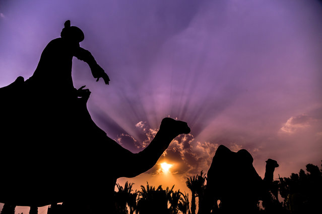 A view of the sculptures in the backdrop of sunset creating a dramatic view of the sky over Lahore, Pakistan, on April 24, 2015 evening. (Photo by Omer Saleem/EPA)