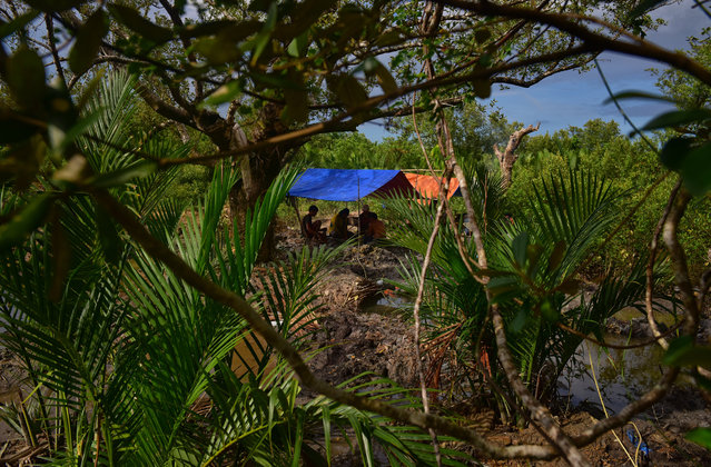 The Balderosdasco family setup their mining pit in the middle of as swamp on March 22, 2017 in Paracale, Philippines. (Photo by Jes Aznar/Getty Images)