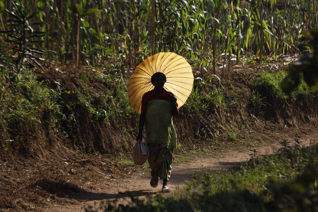 A Rwandan woman carries an umbrella for shade at Mulindi, about 60 km (40 miles) north of the capital Kigali, August 5, 2010. (Photo by Finbarr O'Reilly/Reuters)