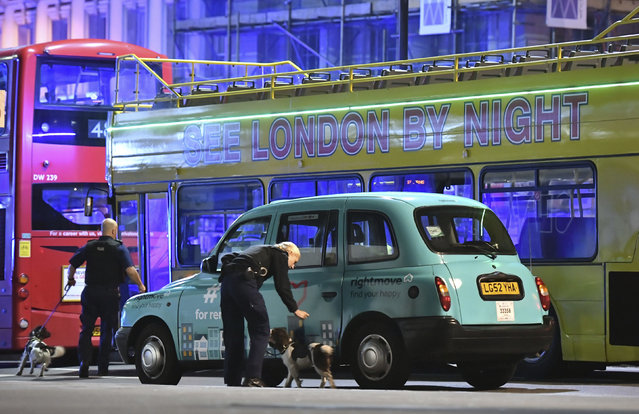 Police sniffer dogs on London Bridge after an incident in central London, Saturday, June 3, 2017. (Photo by Dominic Lipinski/PA Wire via AP Photo)