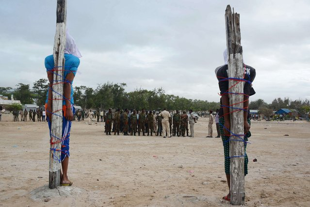 Two Somalis, convicted of the murder of a Somali nurse working with a Turkish medical aid unit, are tied to large wooden stakes as they wait to be executed by a firing squad on July 15, 2014 in Mogadishu. (Photo by Mohamed Abdiwahab/AFP Photo)