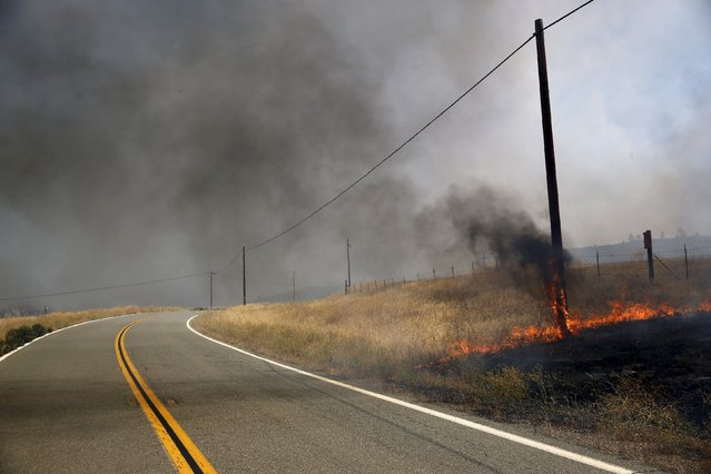 Flames consume a utility pole along Morgan Valley Road at the so-called Jerusalem Fire in Lake County, California, August 12, 2015. (Photo by Robert Galbraith/Reuters)
