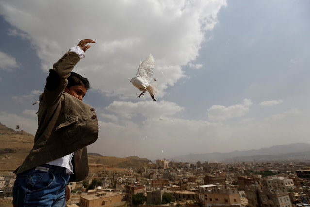 A boy releases a dove as part of a campaign to push Yemeni negotiators to in Kuwait to reach a peace agreement, in Sanaa, Yemen June 29, 2016. (Photo by Khaled Abdullah/Reuters)