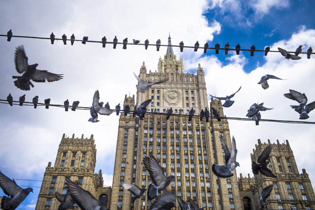 Pigeons take off from wires in front of the Russian Foreign Ministry building, in Moscow, Russia, Thursday, March 29, 2018. (Photo by Alexander Zemlianichenko/AP Photo)