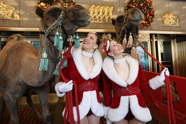 """Rockettes """"herd"""" camels, donkeys and sheep into the Radio City Music Hall for their first day of rehearsals in the 2009 edition of the Radio City Christmas Spectacular, running November 13 – December 30, 2009. (Photo by Amanda Schwab/Starpix)"""