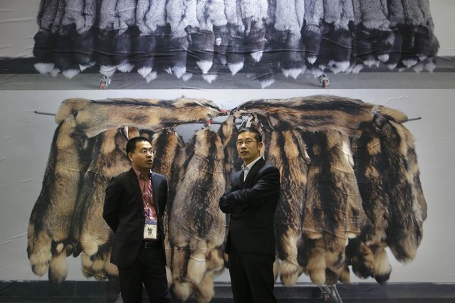 Exhibitors chat in front of a poster showing the fur of farmed fox (top) and of farmed raccoon at the 2015 China Fur and Leather Products Fair in Beijing, January 15, 2015. (Photo by Jason Lee/Reuters)
