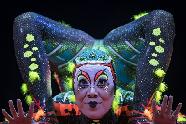 """A member of the Canadian circus troop """"Le Cirque du Soleil"""" performs during the show """"Totem"""" in Paris on October 24, 2018. (Photo by Lionel Bonaventure/AFP Photo)"""