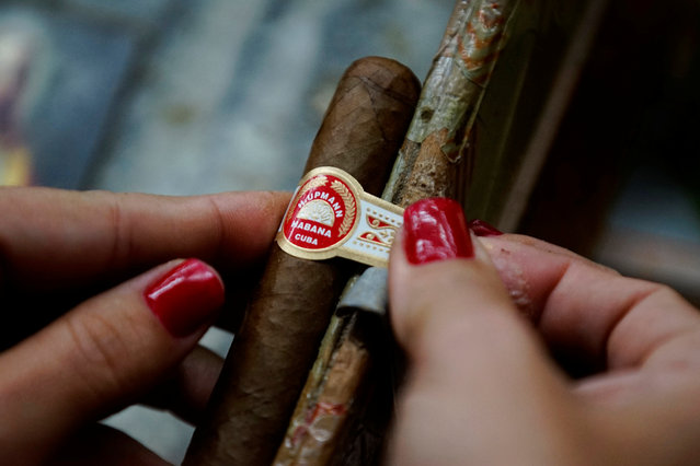 A woman adds a band onto a cigar at the Corona Tobacco factory in Havana on March 2, 2017. (Photo by Alexandre Meneghini/Reuters)